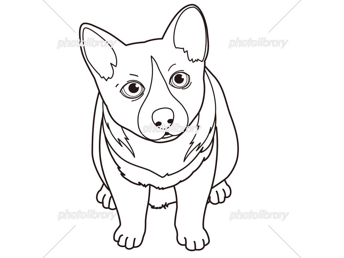 塗り絵にも使える犬のイラスト イラスト素材 5143391 フォトライブ