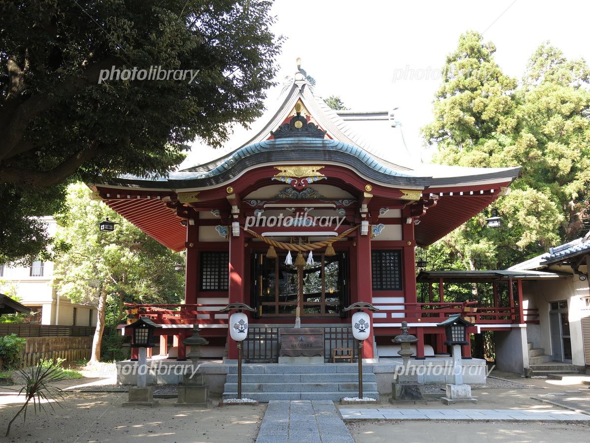柏 諏訪 神社