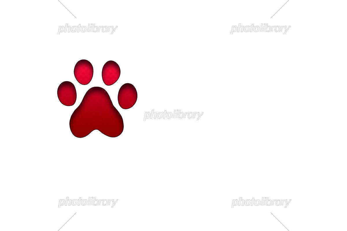 犬の足跡 イラスト素材 [ 5331857 ] - フォトライブラリー photolibrary
