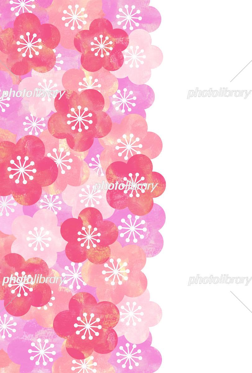 梅の花 背景 イラスト素材 [ 5333003 ] - フォトライブラリー photolibrary