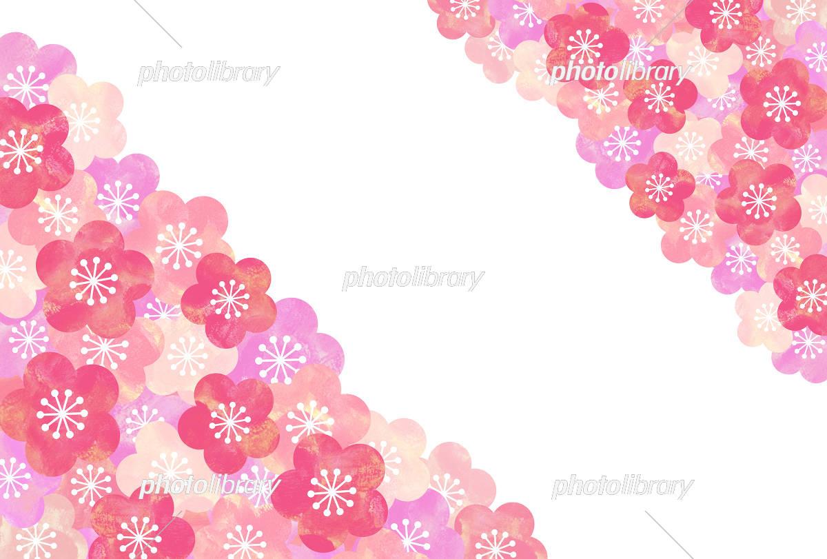 梅の花 背景 イラスト素材 [ 5333045 ] - フォトライブラリー photolibrary