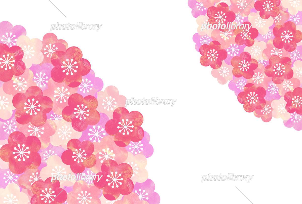 梅の花 背景 イラスト素材 [ 5333046 ] - フォトライブラリー photolibrary