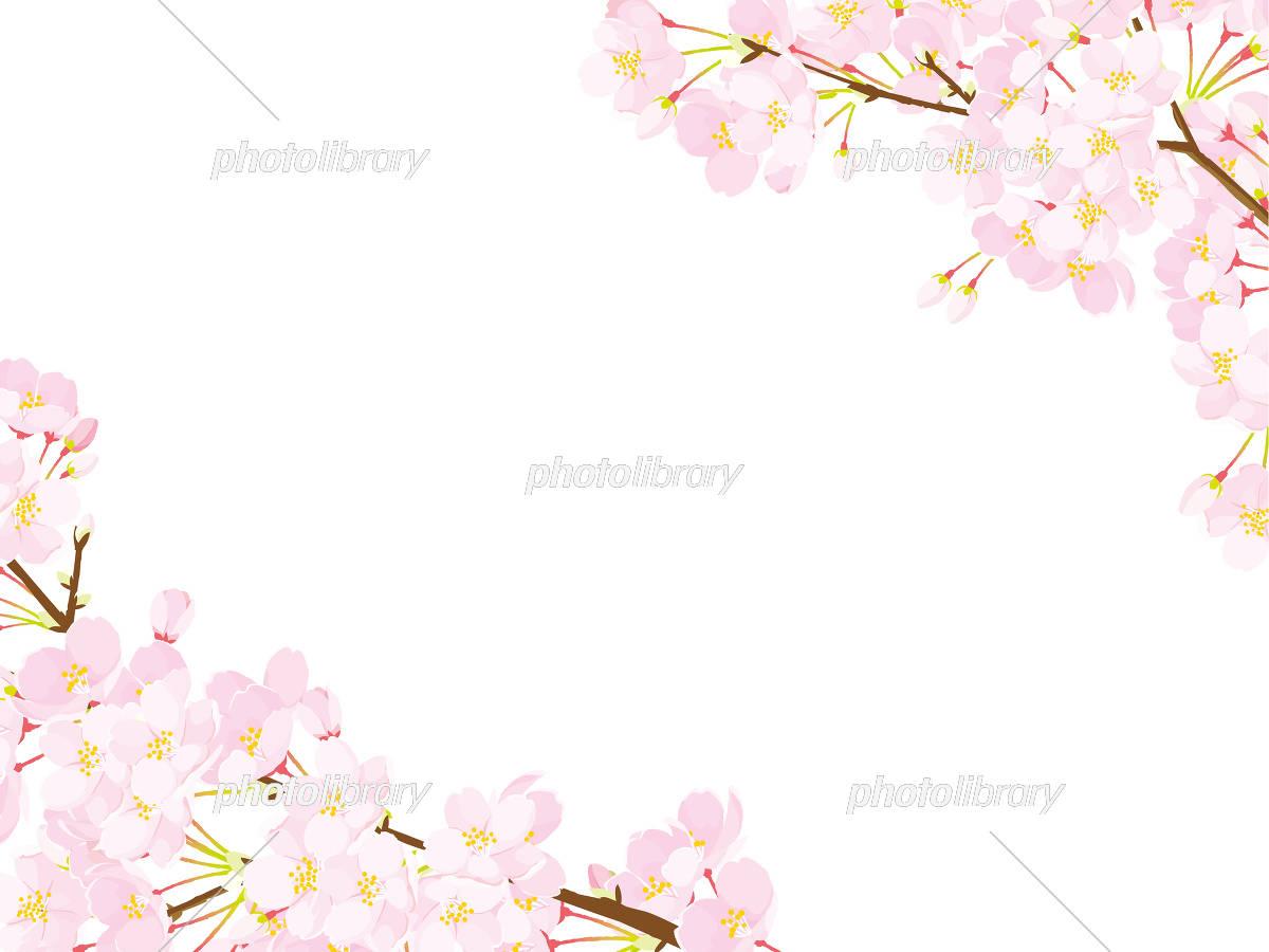 桜 フレーム イラスト素材 [ 5334548 ] - フォトライブラリー photolibrary