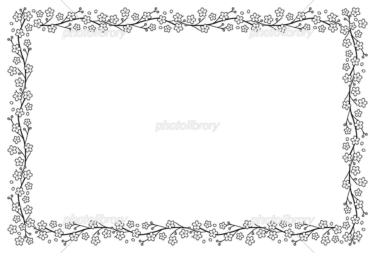 桜のフレーム 白黒 イラスト素材 [ 5400799 ] - フォトライブラリー