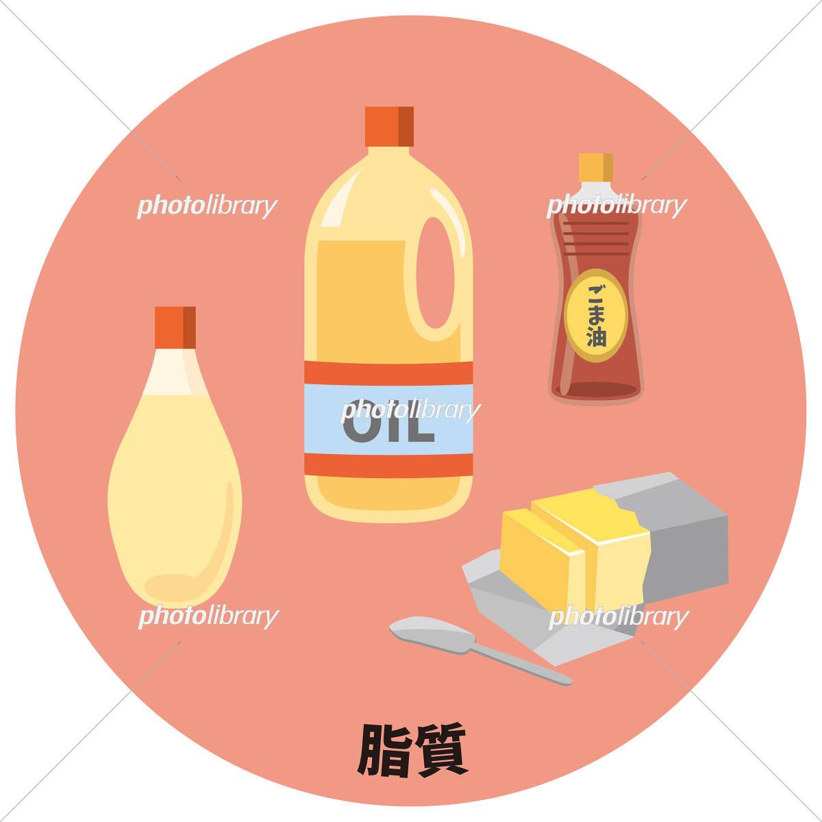 五大栄養素 脂質 イラスト素材 [...