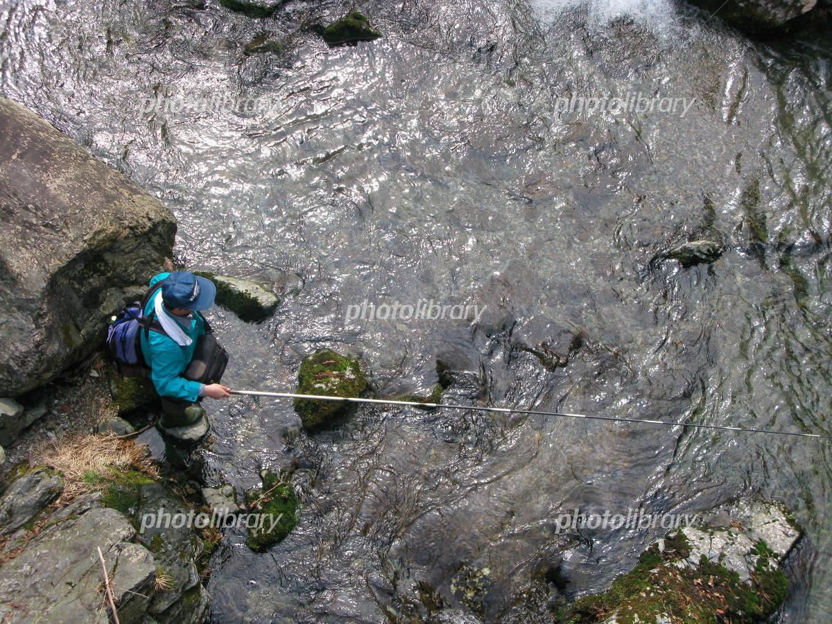 Mountain stream fishing Photo