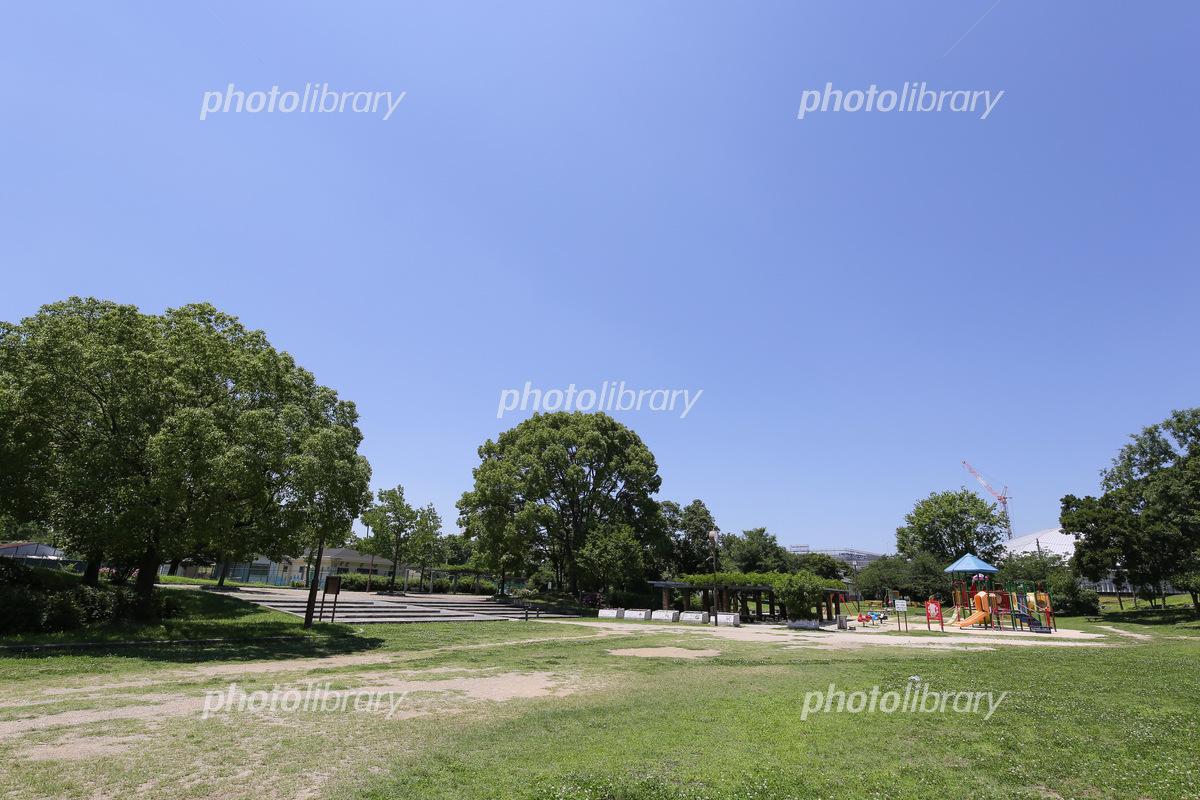 堺市 大浜公園 写真素材 [ 6445371 ] - フォトライブラリー photolibrary