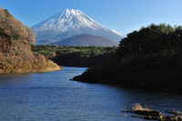 Fuji from Lake Shoji Stock photo [664966] World