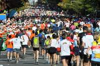 New York City Marathon Stock photo [667503] New