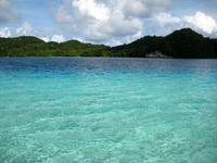 パラオの島と海 の写真素材