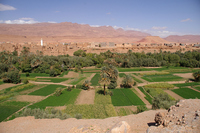 Moroccan Sahara Oasis Stock photo [751518] Morocco