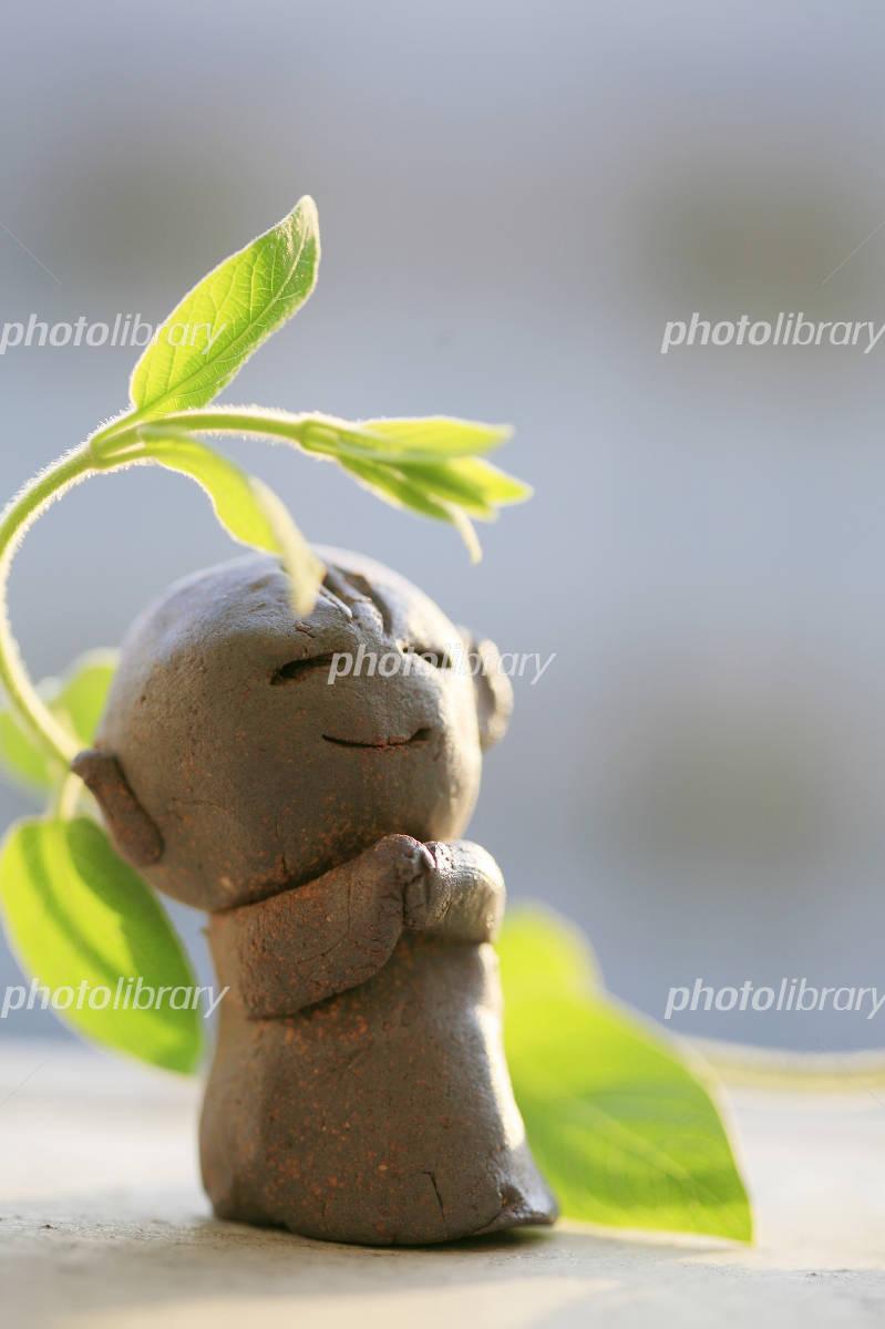 可愛い笑顔のお地蔵様とスイカズラの新芽 写真素材 [ 837546 ...
