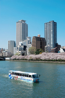 Spring Okawa and amphibious vehicles Stock photo [843017] Chuan
