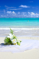 Bouquet and the sea Stock photo [843640] Okinawa