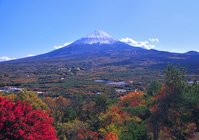 Fuji from Koyodai Stock photo [900747] Mt.