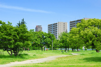 Green space and apartments Stock photo [902398] Apartment