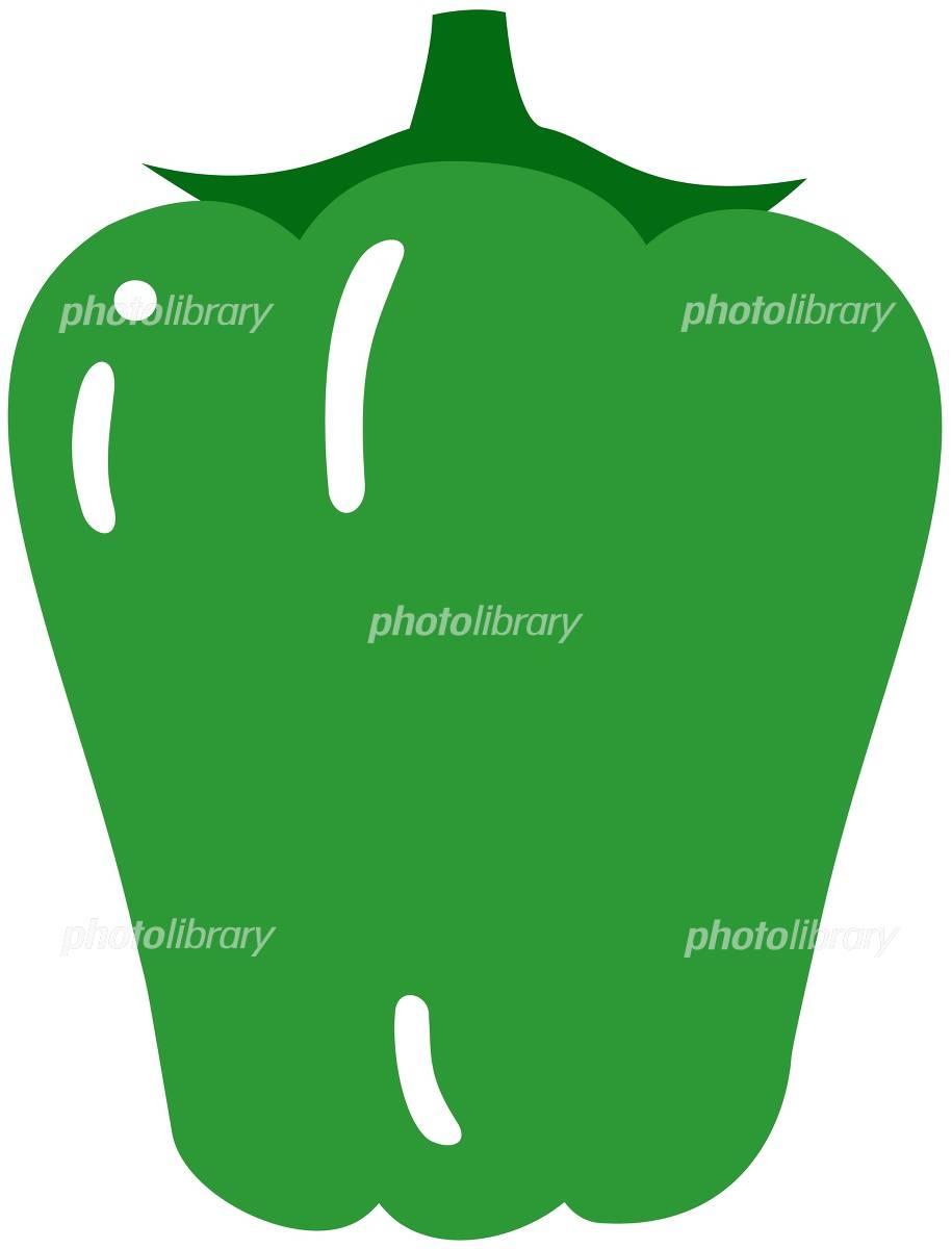 ピーマン イラスト素材 1011652 フォトライブラリー Photolibrary