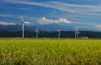 Gassan and rice and windmill Stock photo [1010417] Landscape
