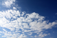 Sheep clouds Stock photo [1013241] Sheep