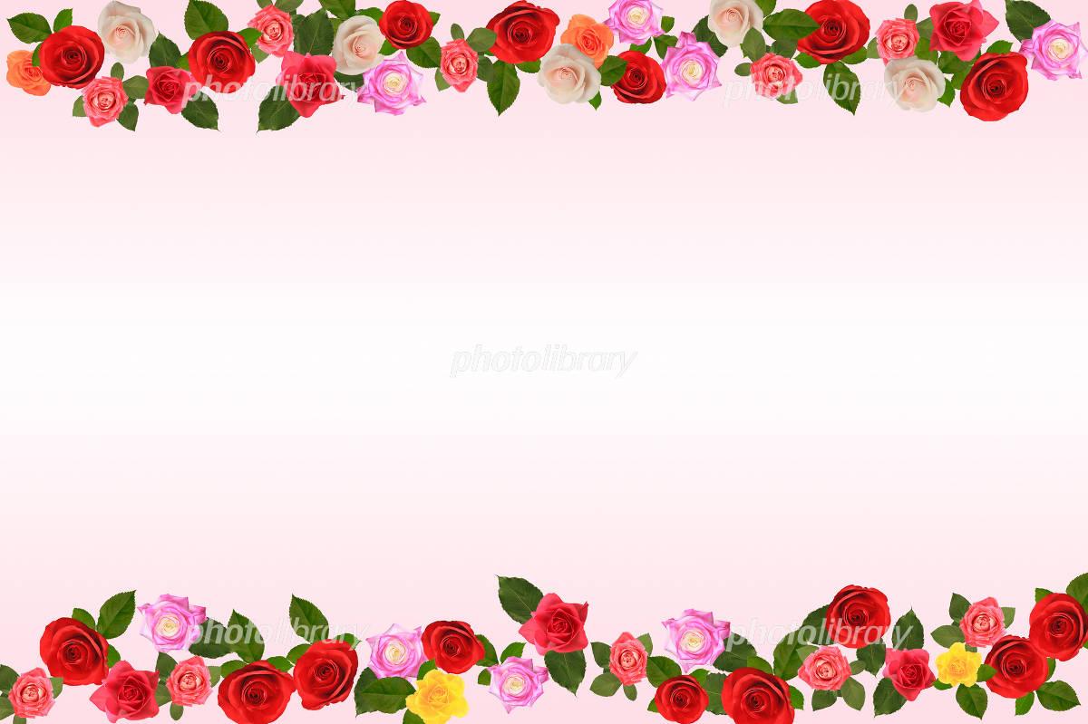 バラの花のフレーム イラスト素材 [ 1119083 ] - フォトライブラリー