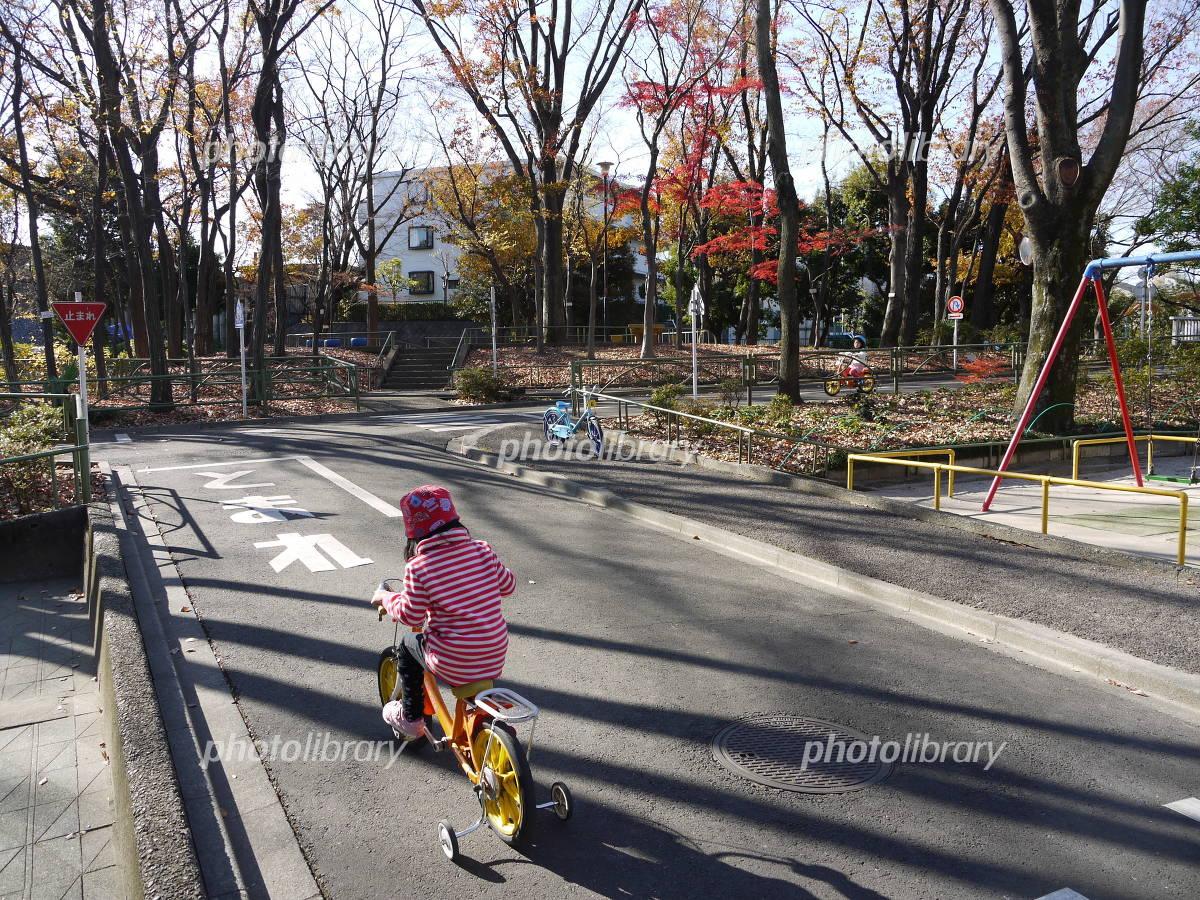 自転車の練習 画像ID 1119352 ...
