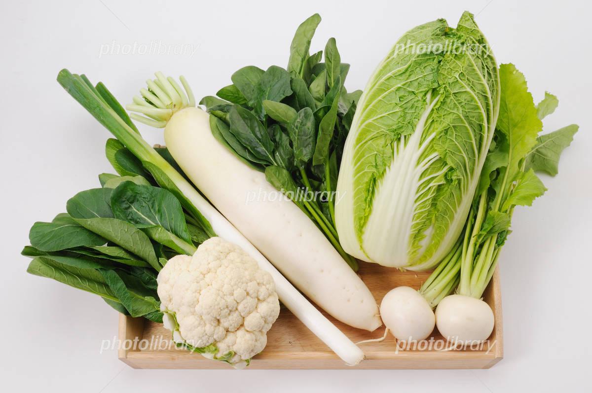 冬の野菜 写真素材 [ 1121245 ] - フォトライブラリー photolibrary