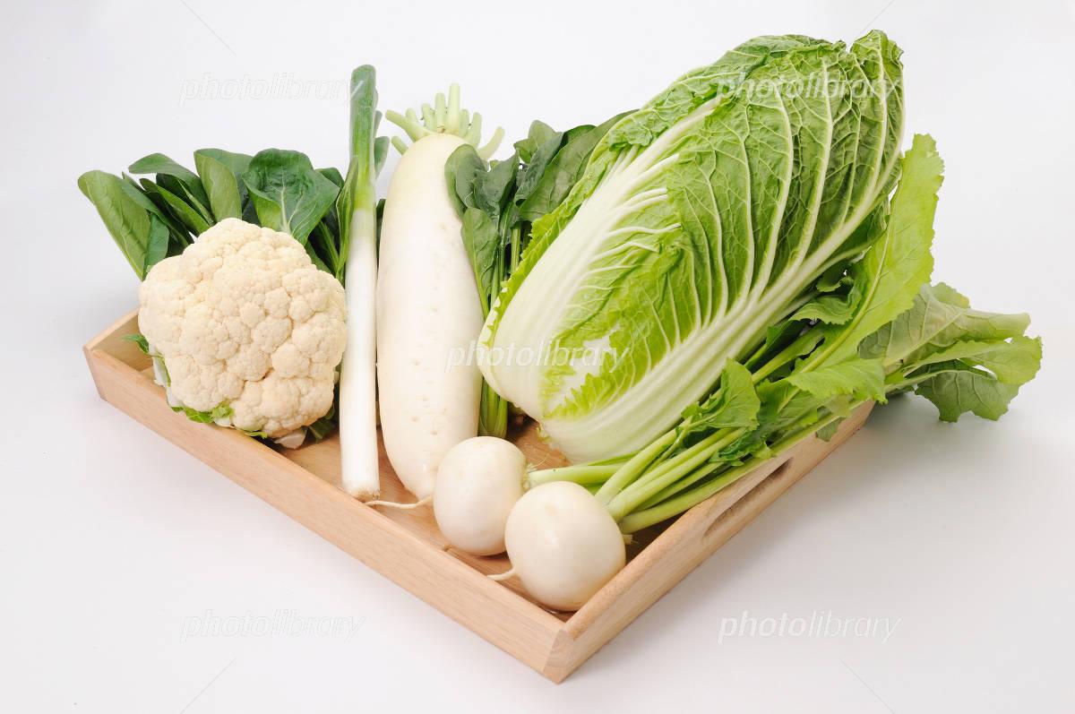 冬の野菜 写真素材 [ 1121257 ] - フォトライブラリー photolibrary