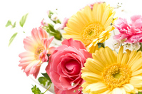 Arrange Flower Stock photo [1119523] Arrange