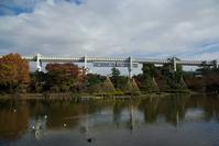 Chiba Park and Chiba monorail Stock photo [1123592] Chiba