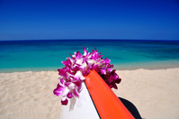 Hawaii paradise landscape Stock photo [1222850] Hawaii