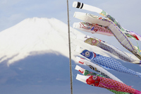 Carp and Mount Fuji Stock photo [1309143] Spring