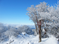 Winter of Mt. Omine Daifugendake Stock photo [1317342] Mt.