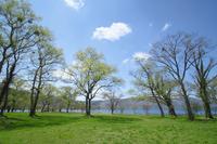Towada lakeside Stock photo [1401237] Lake