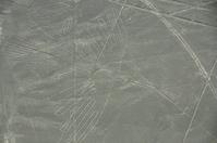 Nazca Lines Condor Stock photo [1403564] Peru