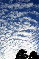 One side scales clouds of autumn sky Stock photo [1405375] Cirrocumulus