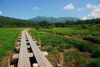 Numa~tsuHara wetlands Stock photo [1497989] Numa~tsuHara