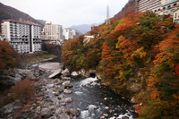 Autumn leaves of Kinugawa Onsen Stock photo [1499824] Kinugawa