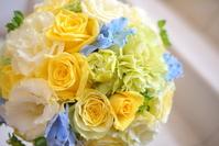 Yellow and light blue Raundobuke Stock photo [1501984] Yellow