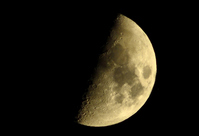 Half moon Stock photo [1502990] Moon