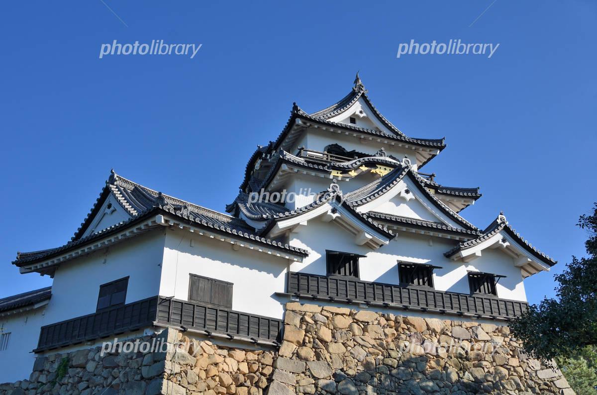Shiga Hikone Castle Photo