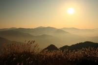 Plateau of pampas grass and sunset Stock photo [1599866] Shiozuka