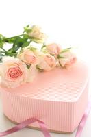 Beautiful roses and gift box Stock photo [1599929] Box