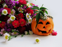Pumpkin right and bouquet left side screen Stock photo [1603118] Halloween