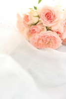 Wedding Bouquet Stock photo [1606759] Bouquet