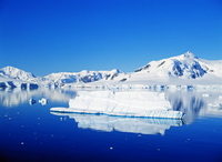 Antarctic Peninsula Paradise Bay Stock photo [1701694] Landscape