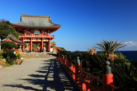 Nichinan coast Udo Shrine Stock photo [1704411] Miyazaki