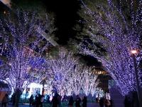 Hakata Station of illumination Stock photo [1708415] Hakata