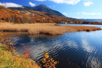 Autumn goddess lakeside and Tateshina Stock photo [1710357] Nagano
