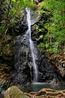 Waterfall of Goho Stock photo [1711731] Waterfall