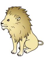 Lion [1786898] Lion